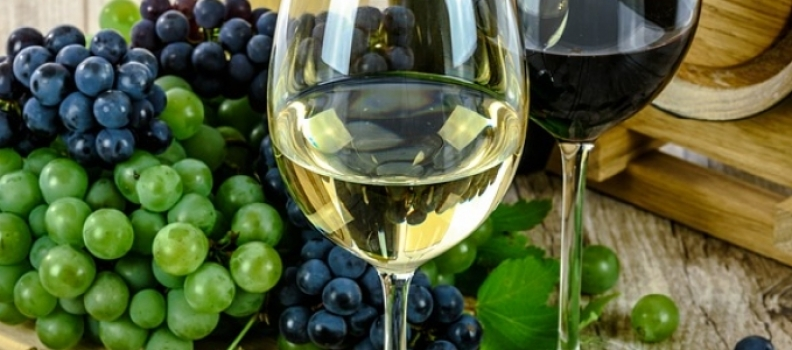 Research and Development Wine Project Discovers Exciting Future Market for Wines